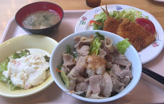 Shiga Universities' Cafeteria Side-by-Side.jpg
